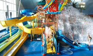 Have some Family Day fun at the Fallsview Indoor Waterpark in Niagara Falls.