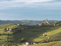 A Culinary Tour Of Piedmont
