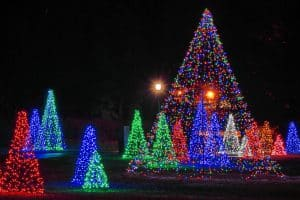 Winter Festival of Lights Christmas Tree display