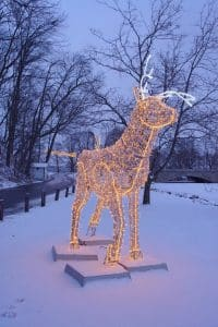 Winter Festival of Lights Deer